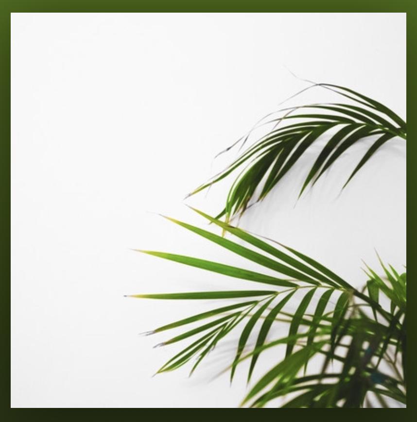 LOFI JAZZ Playlist